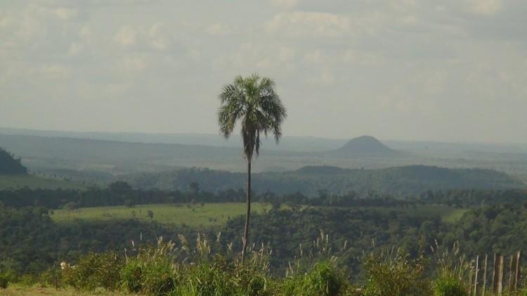 Cordillera del Amambay, terra ancestrale dei pai tavytera