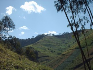 Da febbraio 2012 sono in calendario i viaggi in Rwanda
